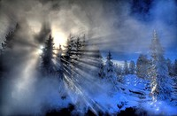 The sun bursts through the steam and pine trees at the West Thumb Geyser Basin at Yellowstone National Park, Wyoming