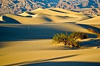 Sunset casts shadows across undulating sand dunes in Death Valley, California