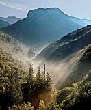 Early morning mist in the Koskaraka Gorge, in the foothills of the Taygetus mountains, Outer Mani, Peloponnese, Greece