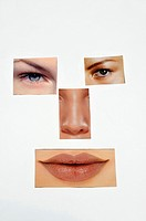 collage of parts of woman face