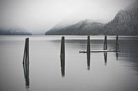 Pier pylons at the old Alaska Pulp Corporation site in Sitka, Alaska  In 1959, the Alaska Pulp Corporation pulp mill began producing wood fiber from t...