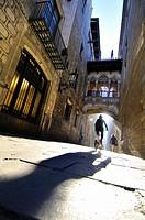 Obispo Irurita street(Carrer del bisbe). Gothic quarter, Barcelona, Catalonia, Spain.