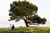 Two people biking in a park along the ocean in Santa Cruz, California