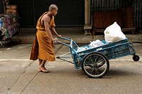 young novice monk pushing cart with food collecting on morning alms round , mae sot, northern thailand