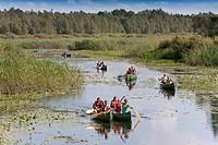 Canoes on Elva River in Estonia