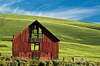 A red barn in the Palouse