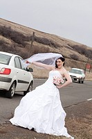 A young woman in a bridal gown, hitchhiking on a country road in Rosalia, Washington, USA.