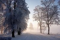 Karlslund in Orebro, Sweden