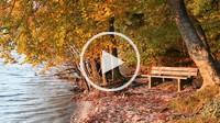 park bench at lakesite, Lake Starnberg, Bavaria, Germany