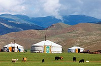Mongolia, Ovorkhangai district, Orkhon valley, camp of yurt.