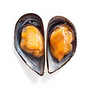 Mussel heart shape