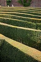 Blenheim palace maze, Oxfordshire, England