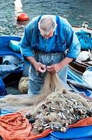 Fisherman disentangling just caught fish from his net, Cavtat, Croatia