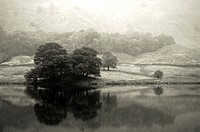 Rydal Water and Loughrigg Fell on a misty autumn afternoon  Lake District National Park, Ambleside, Cumbria, United Kingdom