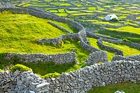 Inisheer Island - Inis Oirr  Aran Islands, Galway County, West Ireland, Europe.