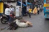 Calcutta, India, Asia.