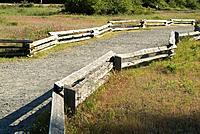 Split rail fence and path