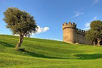 Castle Garden from the Castello Montebello, Bellinzona