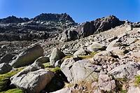 Canchal de la Ceja  Sierra de Bejar  Sierra de Gredos  Ávila  Castilla León  Spain