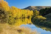 Duero River. Valbuena de Duero. Valladolid Province. Castilla y Leon. Spain.