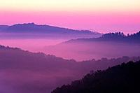 Sunrise showing the layed mountains off Auxier Ridge  Red River Gorge area of the Daniel Boone National Forest in Kentucky, United States