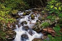 Alba River. Redes Natural Park and Biosphere Reserve. Soto de Agues. Concejo de Sobrescobio. Asturias. Spain.