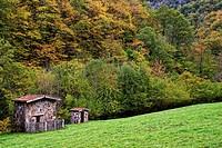 Cabins. Route of El Alba. Redes Natural Park and Biosphere Reserve. Soto de Agues. Sobrescobio Council. Asturias. Spain.
