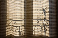 shadows on the curtains
