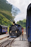 Furka cogwheel railway steam engine DFB 1 arriving at Realp station  Switzerland, Western Europe, Grimsel-/Furka region, Uri  The steam engine HG 3/4 ...