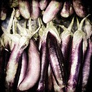 Egg plant in market