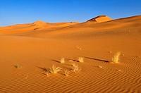 sanddunes of In Tehak, Tadrart, Tassili n´ Ajjer National Park, Unesco World Heritage Site, Algeria, Sahara, North Africa