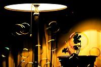Lamp with soap bubbles. Valencia