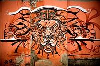 Lion´s head graffiti