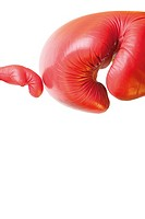 two small boxing gloves sitting in front of large or collaborative attitude
