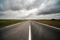 rural road between wheat crops in Seville, Spain