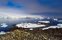 The coastline of the Antarctic Peninsula, at Puerto Covadonga, near the location of the Chilean Base General Bernardo O´Higgins Riquelme.