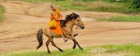 Novice is riding horse to go for collecting alms offerings, Wat Tam Pa Ar-Cha Thong, Maechan, Chiangrai, North of Thailand.