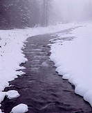 Winter snow and fog along creek, Wallowa Lake State Park, northeast Oregon, USA