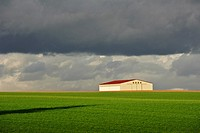 Barn under stormy sky, Marne, Champagne Ardennes region, France