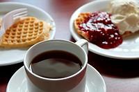 Waffles, Hotel in Myrdal,Aurlandsfjord, Song og Fjordane,Norway