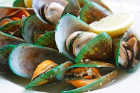 Green lip mussels, New Zealand