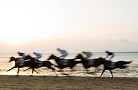 Spain - The famous horse races of Sanlucar de Barrameda take place every year during August along a 1 800m stretch of beach at the mouth of the River ...