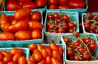 A variety of small quart and pint containers of tomatoes for sale at a farmer´s market