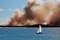 Bushfire opposite Noosa Heads  Queensland, Australia
