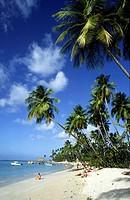Beautiful clean caribbean beach at Pigeon Piont in Tobago