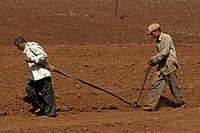 Farm workers plough field by hand near Kohlapur Maharashtra India