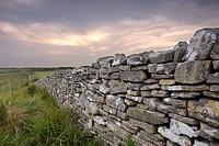 Dry Stone Dorset Wall