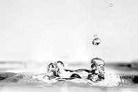 Water droplet impact