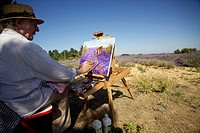 Man painting in a lavender field near Valensole, Provence-Alpes-Côte d´Azur, France