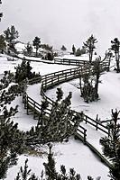 Winter, Boardwalk, Mammoth Hot Springs, Yellowstone NP